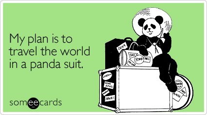 someecards.com - My plan is to travel the world in a panda suit