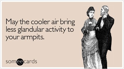 Funny Seasonal Ecard: May the cooler air bring less glandular activity to your armpits.