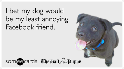 someecards.com - I bet my dog would be my least annoying Facebook friend.