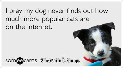 someecards.com - I pray my dog never finds out how much more popular cats are on the Internet.