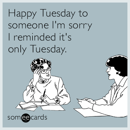 Happy Tuesday to someone I'm sorry I reminded it's only Tuesday.