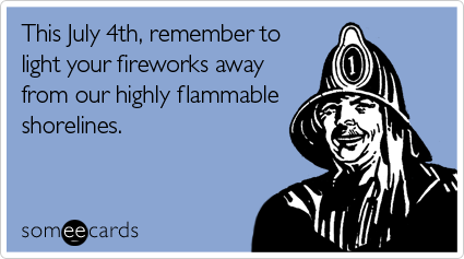 someecards.com - This July 4th, remember to light your fireworks away from our highly flammable shorelines