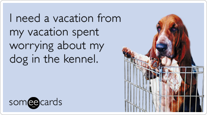 someecards.com - I need a vacation from my vacation spent worrying about my dog in the kennel.