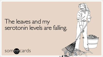 someecards.com - The leaves and my serotonin levels are falling