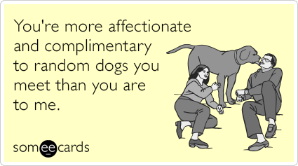 You're more affectionate and complimentary to random dogs you meet than you are to me.