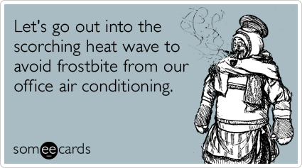 someecards.com - Let's go out into the scorching heat wave to avoid frostbite from our office air conditioning.