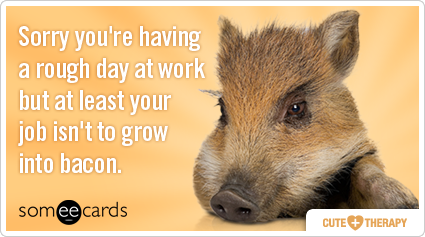 someecards.com - Sorry you're having a rough day at work but at least your job isn't to grow into bacon.