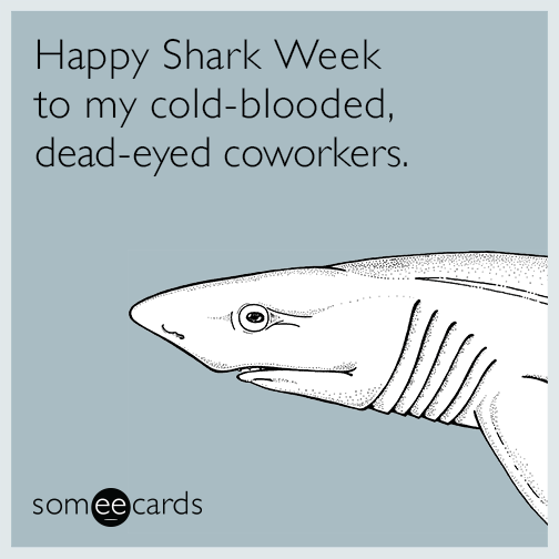 Happy Shark Week to my cold-blooded, dead-eyed coworkers.