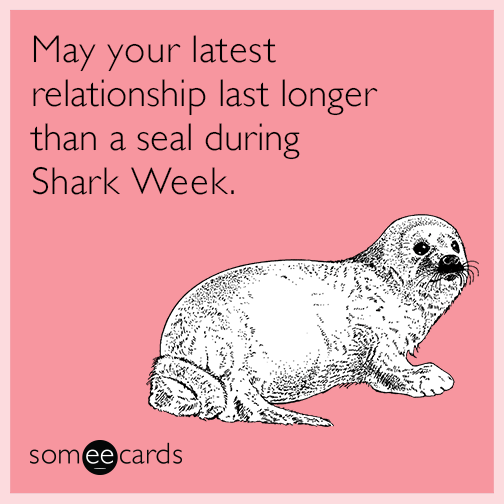May your latest relationship last longer than a seal during Shark Week.