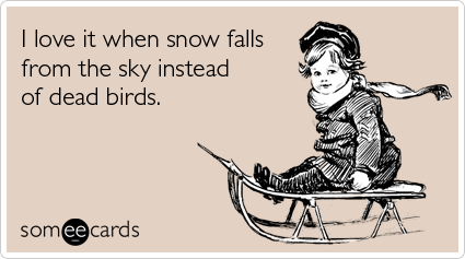 someecards.com - I love it when snow falls from the sky instead of dead birds