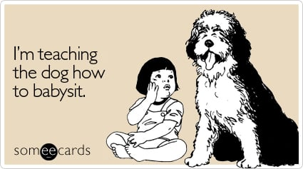 someecards.com - I'm teaching the dog how to babysit