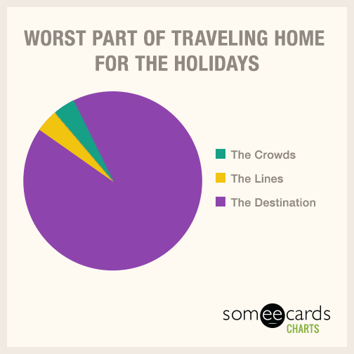 Worst part of traveling home for the holidays