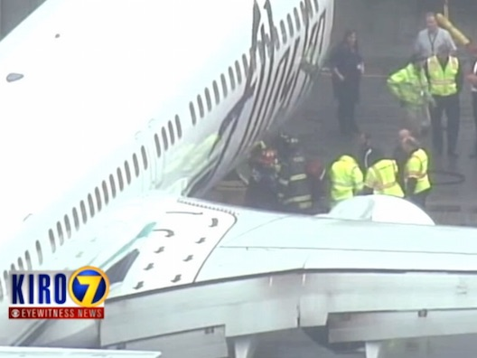 A baggage handler woke up from a nap trapped in the cargo hold of a flight in mid-air.