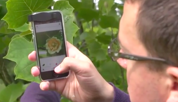 There's a new app that instantly identifies plants and flowers and it's awesome.
