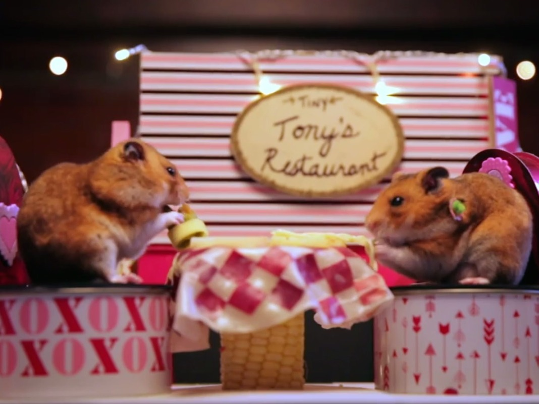 This 'Tiny Hamster' went on a tiny adorable Valentine's date that's probably better than yours.
