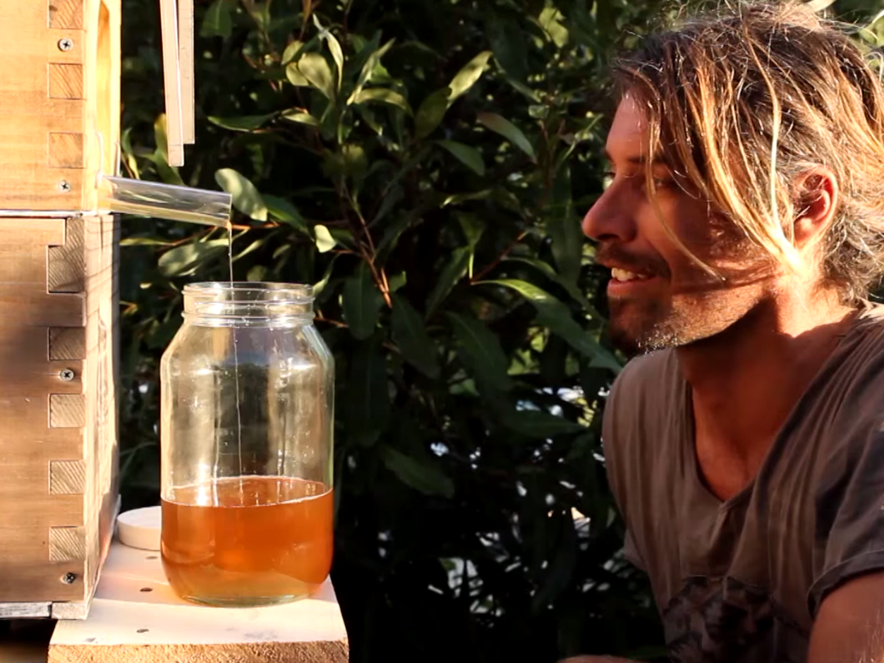 Someone has invented the world's first beehive with a tap for collecting honey.