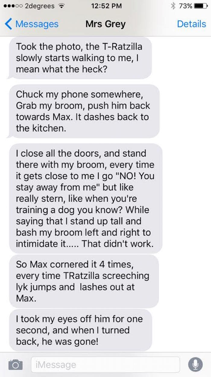 Woman texts surprisingly gripping saga of her and her lazy cat teaming up to defeat 'Ratzilla.'
