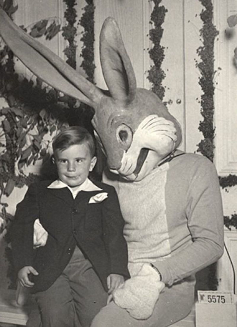 the best pictures of creepy easter bunnies scaring the chocolate