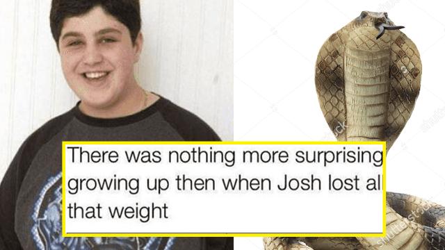 21 brutal Drake & Josh wedding memes that'll make you laugh but also cry.
