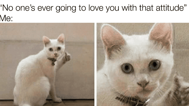 24 Memes For Anyone With A Little Attitude Problem