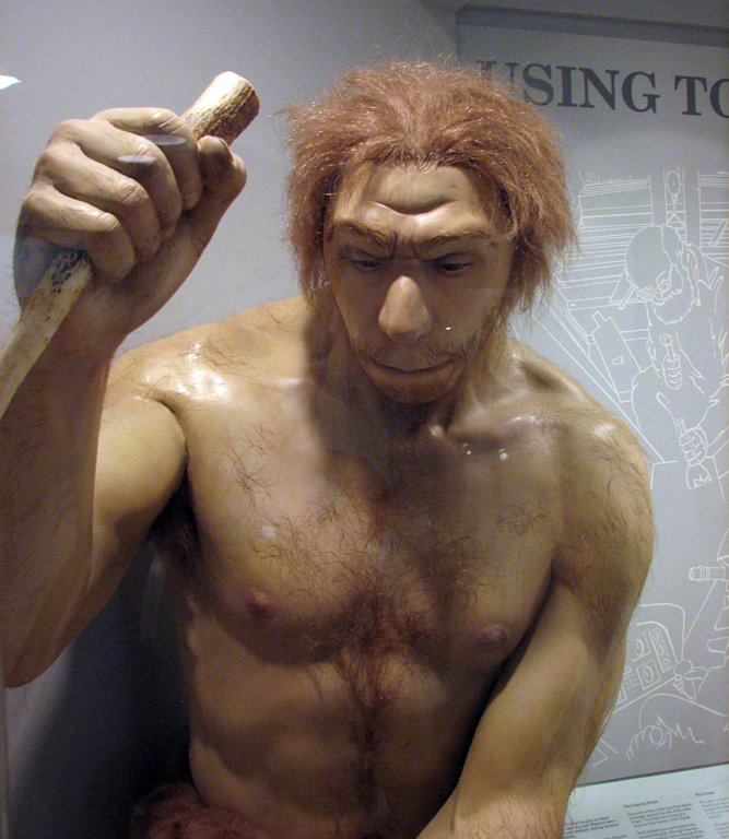 Easy to see what humans saw in Neanderthals.