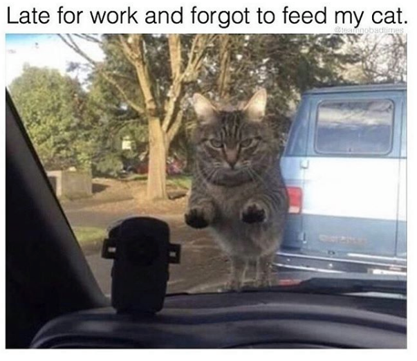 29 memes about work to look at while pretending to do work.