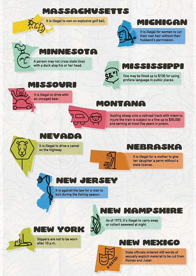 Map shows the craziest law in every state, lets you know where you can't wear a fake mustache.