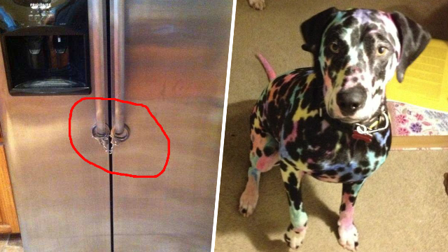 34 Reasons Children Are Pure Evil And Can't Be Left Alone For One Second