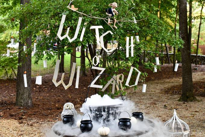Witch or wizard?
