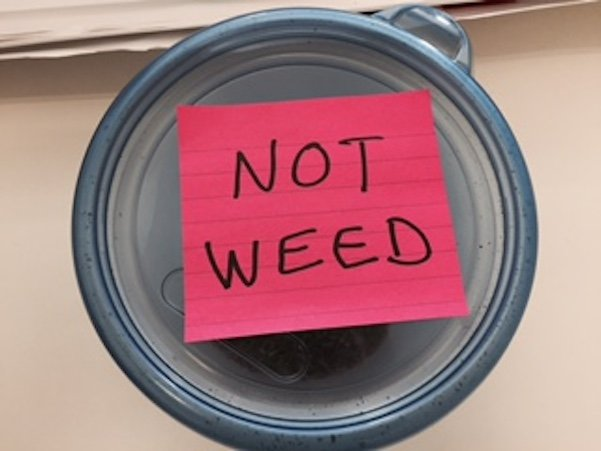 """Man caught hiding marijuana in a container marked """"Not Weed."""""""