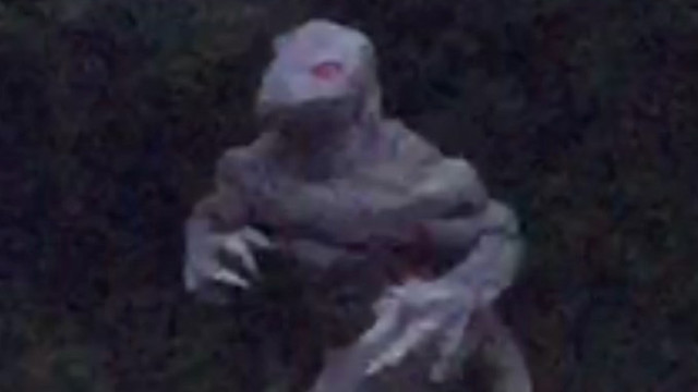 A woman got a picture of South Carolina's infamous Lizard Man, and he is HOT (for a lizard).