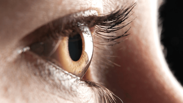 A woman had 27 contact lenses removed from her eye. Your day could be worse.