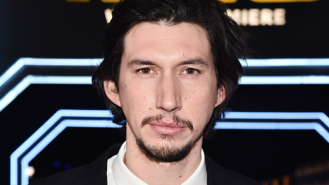 People think this cat looks exactly like Adam Driver. They're right.