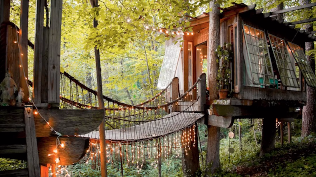 A magical adult treehouse is Airbnb's most popular listing. Peek inside!