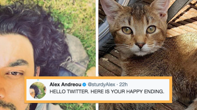 Guy turned down from adopting a cat because he's gay. The Internet found a solution.
