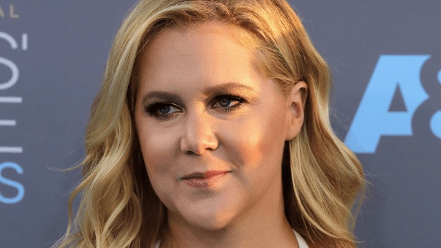 Amy Schumer defends 'Formation' video like a true Beyoncé-loving white girl.