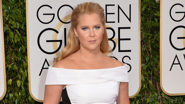 Amy Schumer flawlessly shut down a troll who photoshopped her face to be 'insta ready.'