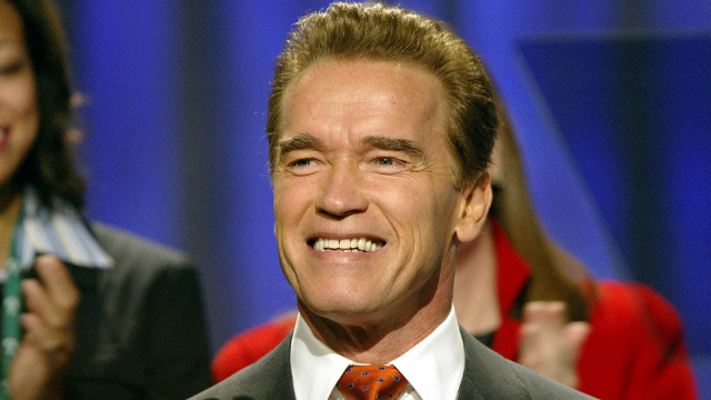 """Arnold Schwarzenegger says """"nothing to worry about"""" after flying-kick attack in South Africa."""