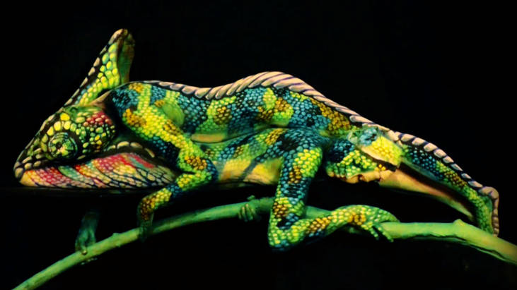 Artist creates mind-bending videos of animals by painting human models.