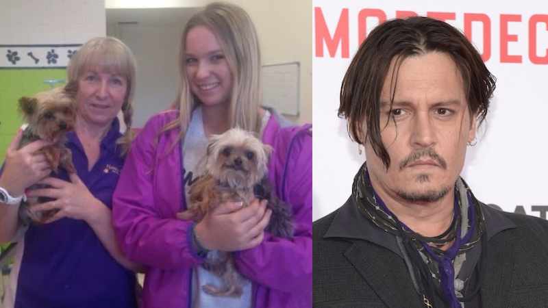 """Australia is threatening to kill Johnny Depp's dogs and it's not even because of """"Mortdecai."""""""