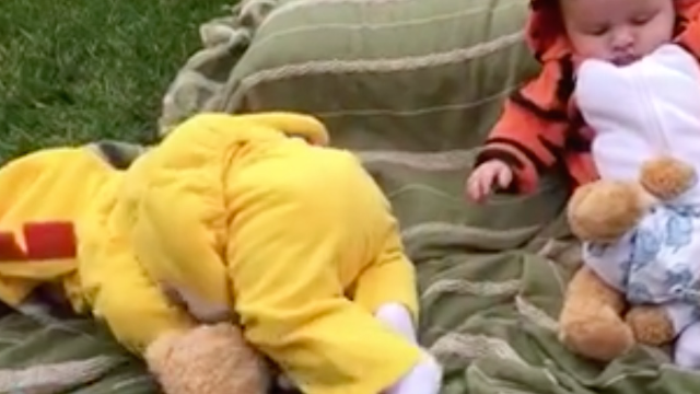 Here's a montage of babies falling over like drunk college freshman during orientation.