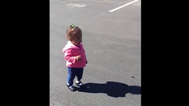 We can't stop laughing at this toddler who is terrified of her own shadow.