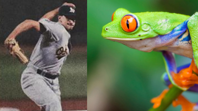 Baseball's getting a lot less boring thanks to MLB's new amphibious pitcher.
