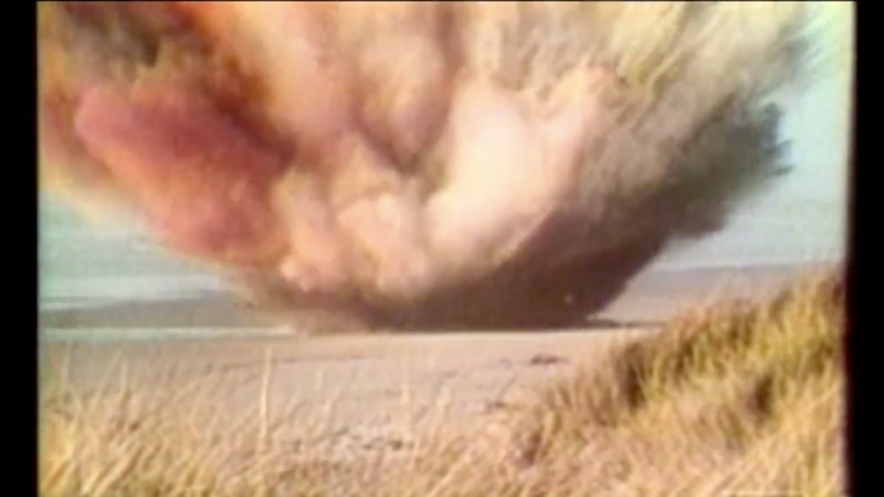 #tbt: That time 45 years ago when people decided to blow up a whale with dynamite.