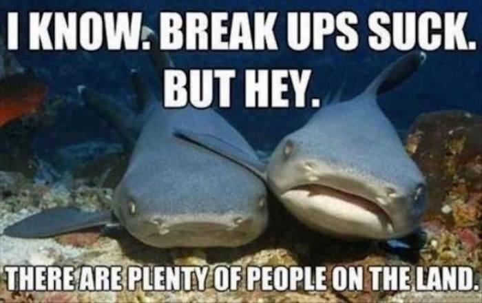 Fish dating jokes