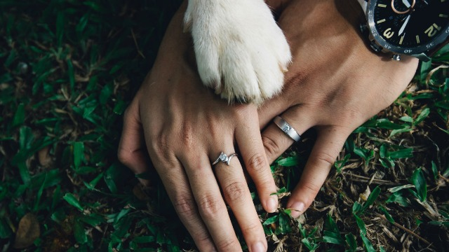 Bride with allergies asks if she's wrong to not allow friend's service dog to attend wedding.