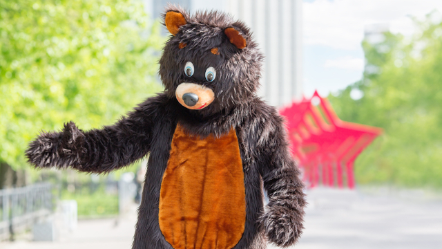 Bear mascot can't keep it together while filming local car dealership commercial.