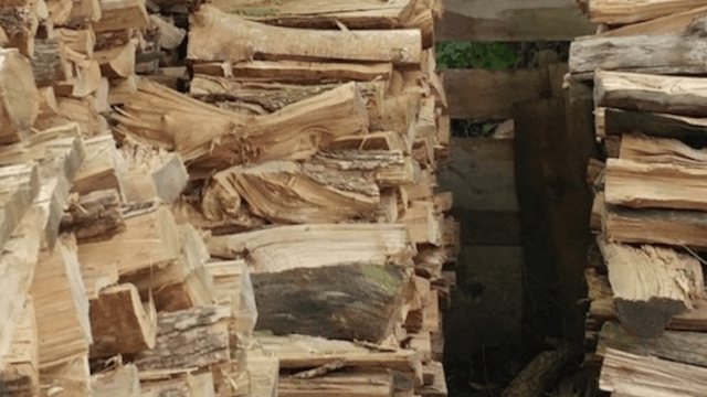 People are tearing their hair out trying to find the cat hiding in these logs.