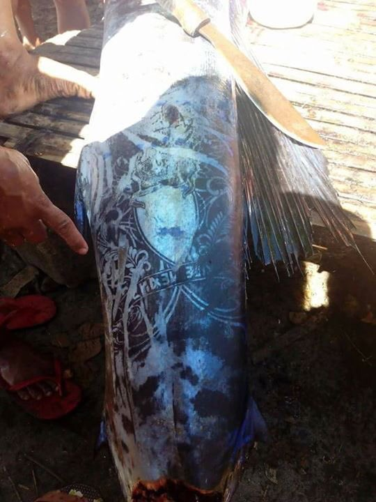 El extraño mensaje tatuado en un pez