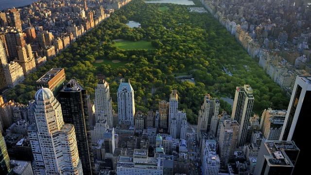 'Central Park Karen' faces backlash for calling cops on black man who asked her to leash her dog.